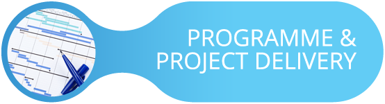 Programme & Project Delivery